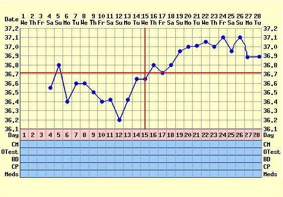 tb graf